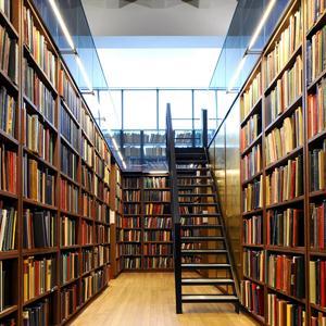 Библиотеки Соснового Бора